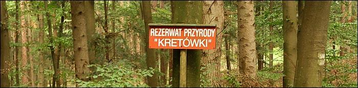 Kretowki news